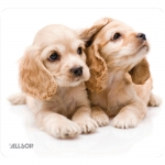 Allsop NatureSmart Mouse Pad (Puppies)