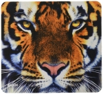 Allsop Nature's Smart Mouse Pad (Tiger)