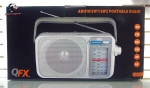 QFX R-24 AM/FM/SW1/SW2 Portable Radio